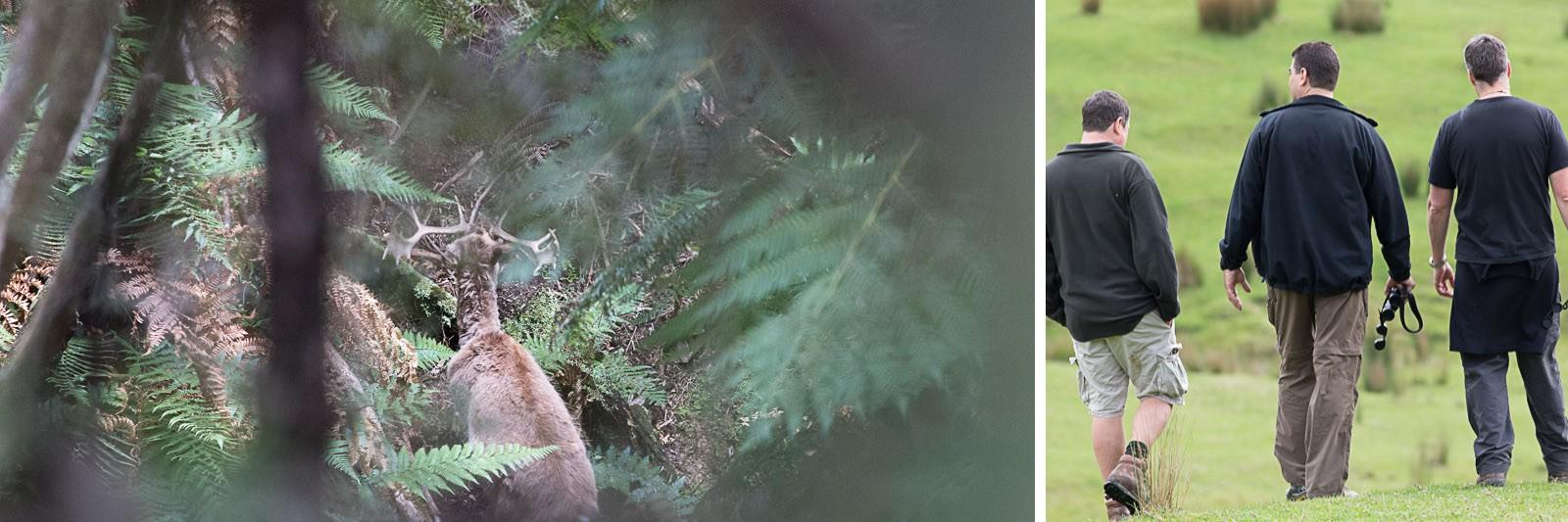 , Processing Deer – Hunts Course