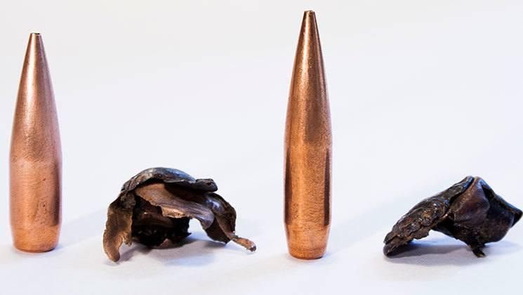 Choosing a long range hunting bullet  What do you need?