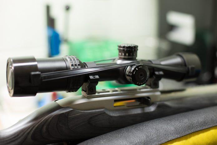 bushnell 2-7 rimfire scope