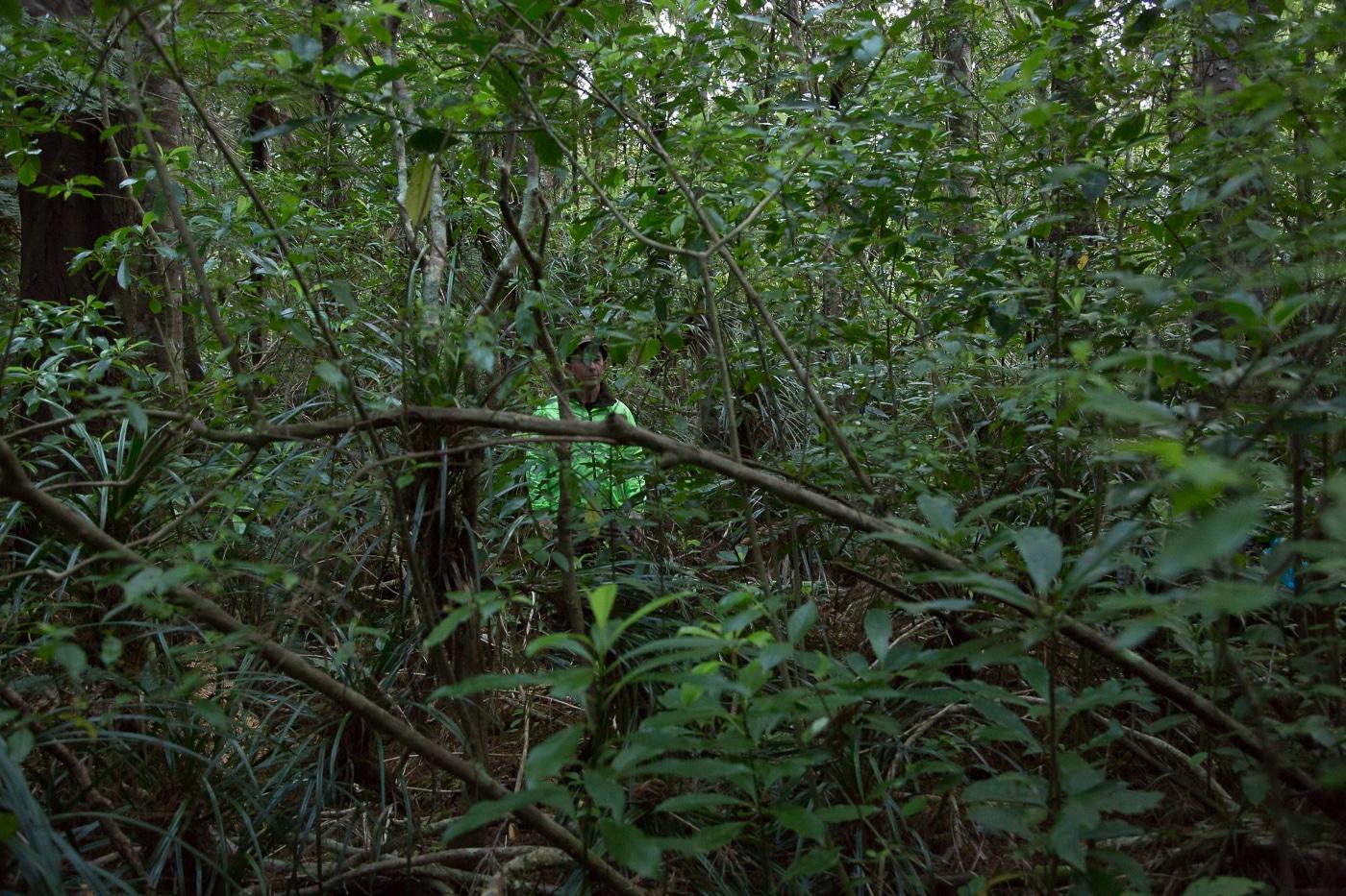 Blaze Camouflage, Blaze Camouflage – Safety while hunting